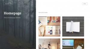 Plantilla de WordPress: Icelock