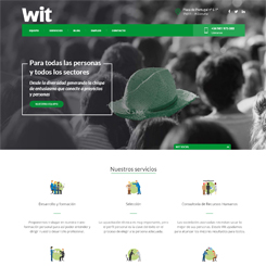 Web de Wit Talento